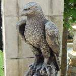 The Triton Hawks