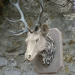 Stags Head Trophy